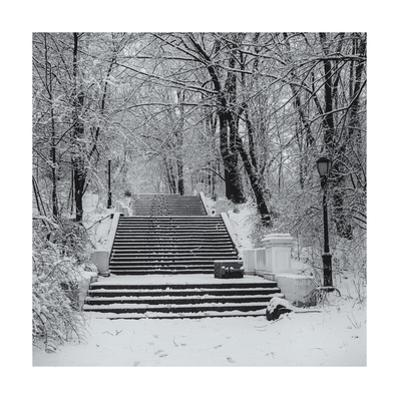 Prospect Park Snowy Staircase by Henri Silberman