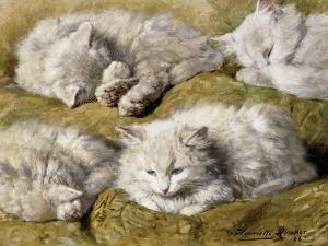 Studies of a Long-haired White Cat by Henriette		 Ronner-Knip