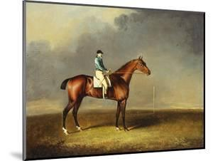 His Royal Highness, the Prince of Wales' Bay Racehorse 'sir David' by 'Trum by Henry Bernard Chalon
