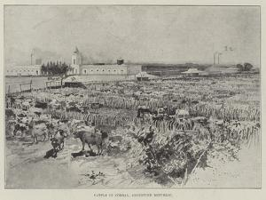 Cattle in Corral, Argentine Republic by Henry Charles Seppings Wright