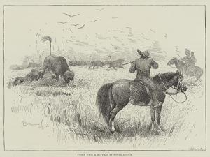 Fight with a Buffalo in South Africa by Henry Charles Seppings Wright