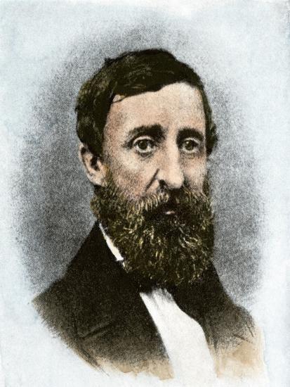 Henry David Thoreau at Age 43--Giclee Print
