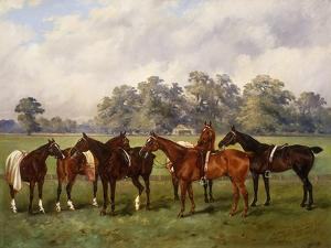 A Group of Polo Ponies, Dainty, Gold, Redskin, Miss Edge, and Piper by Henry Frederick Lucas-Lucas
