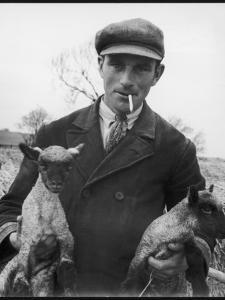 Farmer Holding His New Born Lambs in the Cotswolds by Henry Grant