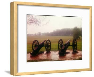 Revolutionary Cannons at Valley Forge