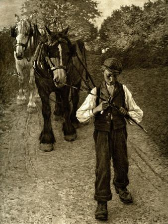 The Plough Boy, 1900