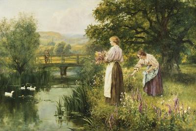 Gathering Spring Flowers