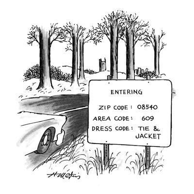 Sign by the side of the road that reads, 'ENTERING  ZIP CODE: 08540; AREA ? - New Yorker Cartoon