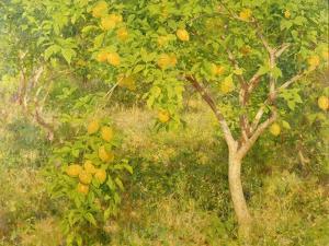 The Lemon Tree, 1893 by Henry Scott Tuke