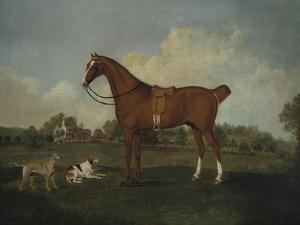 A Bay Hunter and Two Hounds in a Landscape, with a Mansion Beyond, 1779 by Henry Thomas Alken