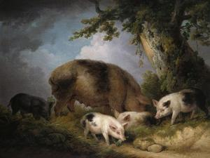 A Sow and Her Four Piglets in a Wooded Landscape by Henry Thomas Alken