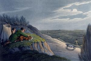 Badger Catching, 1820 by Henry Thomas Alken
