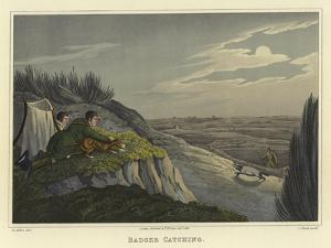 Badger Catching by Henry Thomas Alken