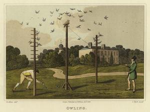 Owling by Henry Thomas Alken