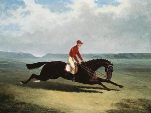 The Baron with Bumpy Up, at Newmarket by Henry Thomas Alken