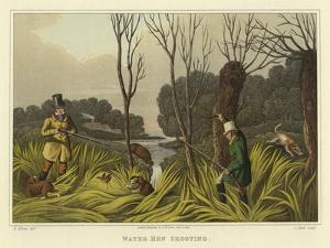 Water Hen Shooting by Henry Thomas Alken