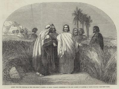 Christ with the Disciples in the Corn-Field