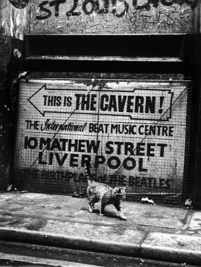 Hep Cat-Evening Standard-Photographic Print