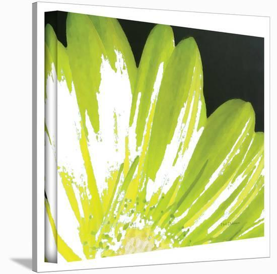 Herb Dickinson 'Gerber Time III' Gallery-Wrapped Canvas-Herb Dickinson-Gallery Wrapped Canvas