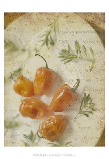 Herb Still Life VI-Irena Orlov-Art Print
