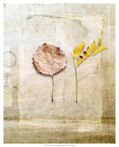 Herbarium II-Ingrid Blixt-Giclee Print