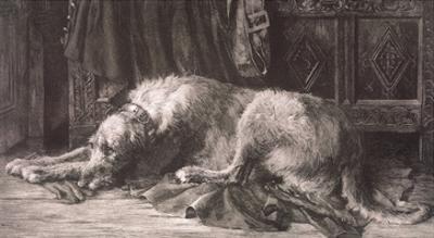 Irish Deerhound by Herbert Dicksee