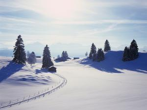 Germany, Bavaria, AllgŠu, Snow Scenery, Back Light, Alps, Mountains, Loneliness, Mountains, Winter by Herbert Kehrer