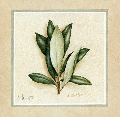https://imgc.artprintimages.com/img/print/herbes-i_u-l-f2z1e50.jpg?p=0