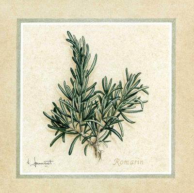 https://imgc.artprintimages.com/img/print/herbes-ii_u-l-f2z1e60.jpg?p=0