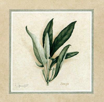 https://imgc.artprintimages.com/img/print/herbes-iv_u-l-f2z1e80.jpg?p=0