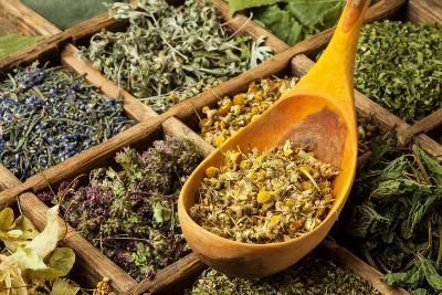 Herbs- jbphotographylt-Photographic Print