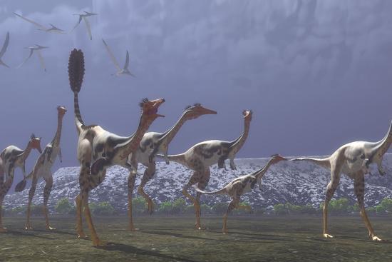 Herd of Mononykus Followed by a Flock of Pteranodons-Stocktrek Images-Art Print