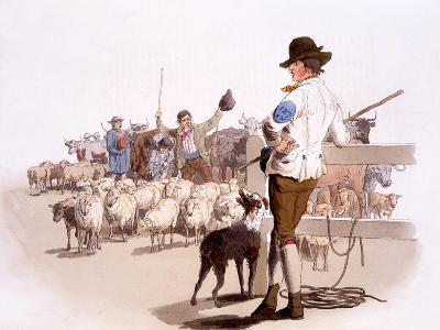 Herdsmen of Sheep and Cattle, from the Costumes of Great Britain, Pub. by Henry Miller, 1805-William Henry Pyne-Giclee Print