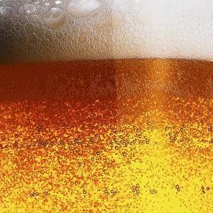 Frothy Beer by Hermann Mock
