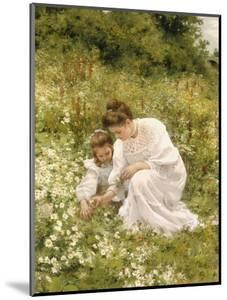 Picking Daisies, 1905 by Hermann Seeger