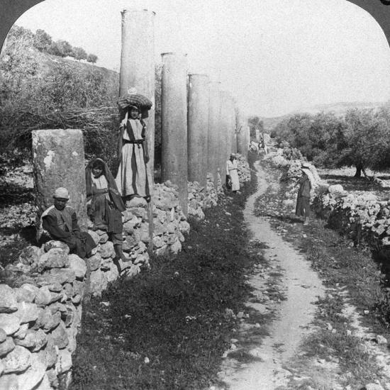 Herod's Street of Columns, Samaria, Palestine (Israe), 1905-Underwood & Underwood-Photographic Print