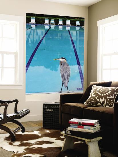 Heron at Pool-Thomas Winz-Wall Mural