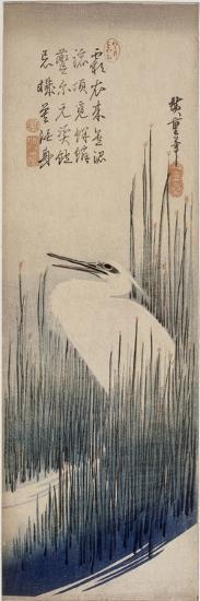 Héron blanc dans les roseaux-Ando Hiroshige-Giclee Print