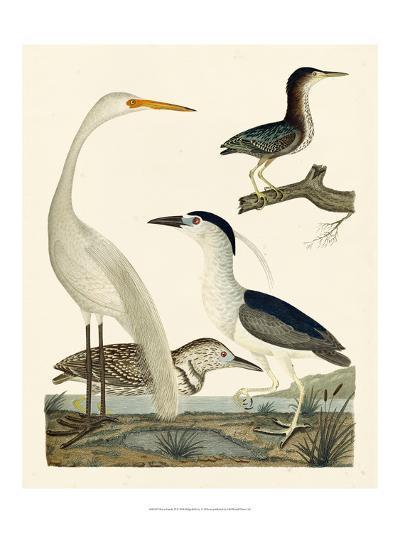 Heron Family II-A^ Wilson-Art Print