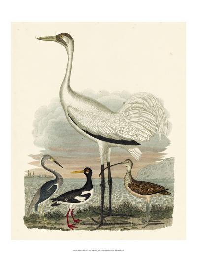 Heron Family III-A^ Wilson-Art Print