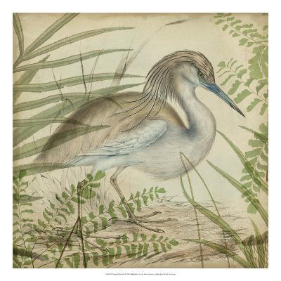 Heron & Ferns II-Vision Studio-Giclee Print