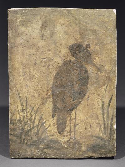 Héron--Giclee Print