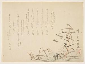 Herons and Reeds