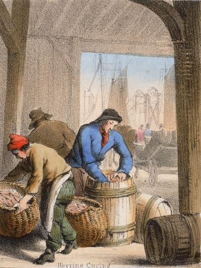 Herring Curing, C1845-Benjamin Waterhouse Hawkins-Giclee Print