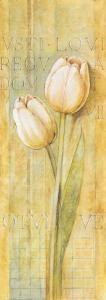 Quiet Flowers II by Herve Libaud