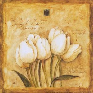 Tulips of my Travels by Herve Libaud