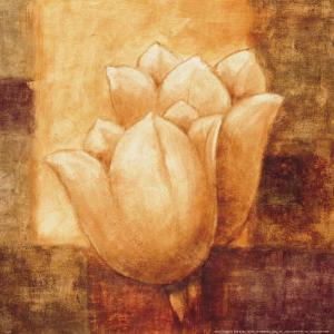 Two Tulips I by Herve Libaud