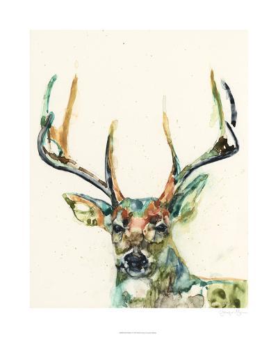 Hi Fi Wildlife II-Jennifer Goldberger-Limited Edition