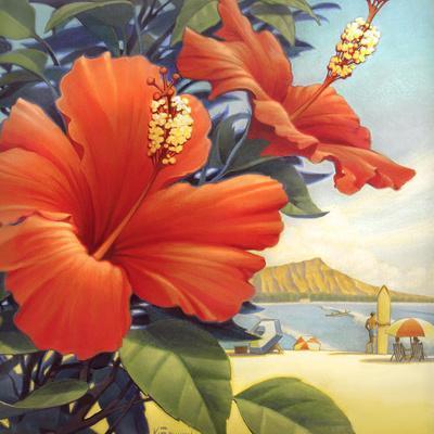 Hawaiian Red Hibiscus Art Print