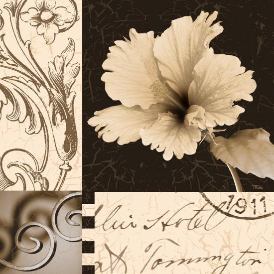Hibiscus Blossom II-Katrina Craven-Art Print